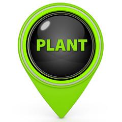 Plant pointer icon on white background