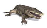 Eryops - Prehistoric Amphibian poster