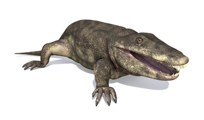 Eryops - Prehistoric Amphibian