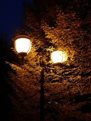 Luce in città