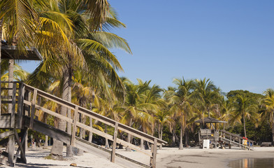 Beach Matheson Hammock Atoll Pool