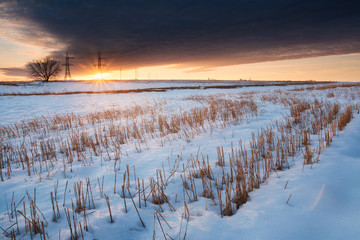 winter sunset over the field