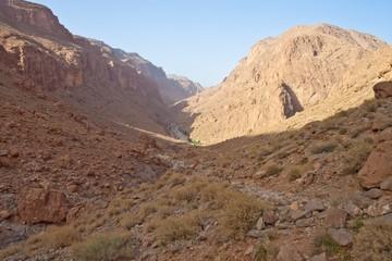 Todra Gorge canyon