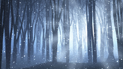 Forest scene on a winters nights