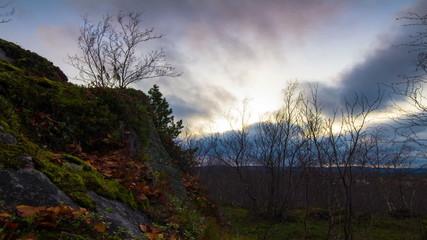 Autumn sunset in the tundra