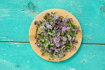 wild marjoram oregano medical flowers in wooden plate