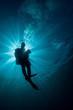 diver silhouette - 74269142