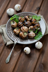 Escargots de Bourgogne, rustic brown wooden background