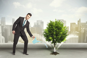 Businessman watering green tree on city background