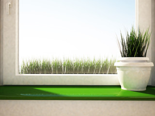 vase with the grass on the green windowsill