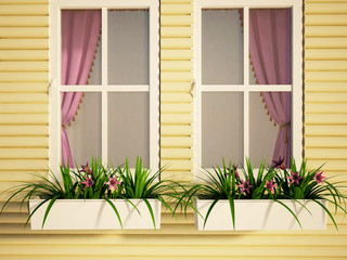 windows on the house and the plants