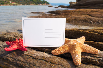 Blank postcard between starfishes on the rocks