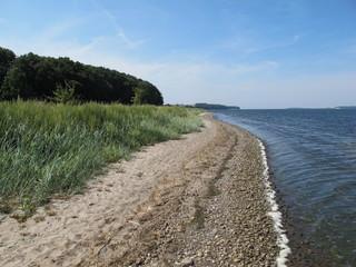 Having Strand - Reddevitzer Höft - Insel Rügen