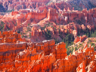 Beautiful colors in Bryce Canyon National Park, Utah, USA