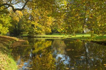 jesienna rzeka przepływakjąca przez park