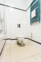 Interior of clean toilet
