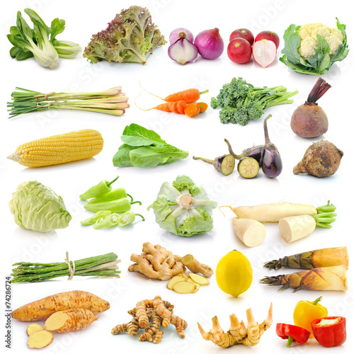 canvas print picture set of vegetable on white background