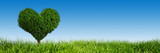 Heart shape tree on green grass field. Love symbol, banner - 74291514