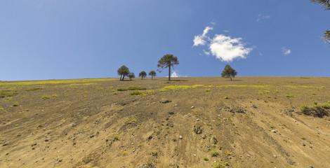 volcanic landscape, Chilean Patagonia, Chile.