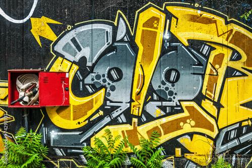 skrzynka-z-wezem-ogniowym-otoczona-duzymi-graffiti