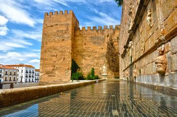 Cáceres, Torre de la Hierba, Foro de los Balbos