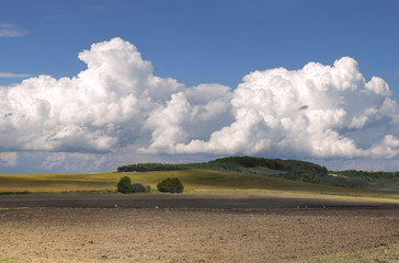 View of agrarian field under a bright cloudy sky