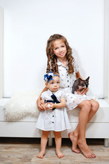little cute sisters and sphinx cat