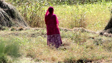 Indian rural woman working in the field