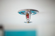 Sprinkler and smoke detector - 74308116