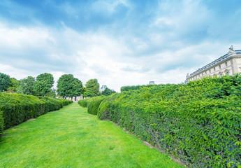Gardens of Paris in summertime