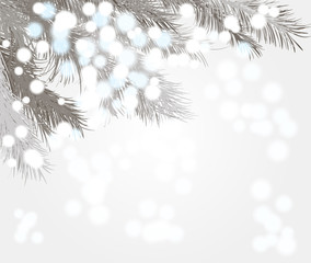 Magical snowfall and spruce branches