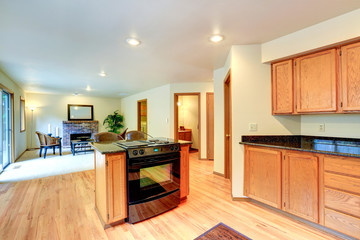 Kitchen interior with island and built-in stove