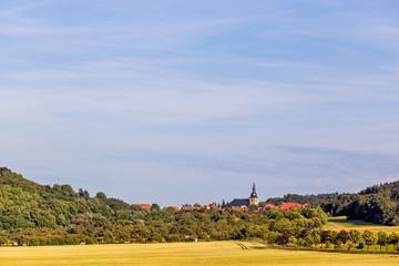 Blick auf Benzingerode Harz