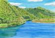 阿武川の新緑