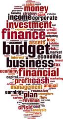 Budget word cloud concept. Vector illustration