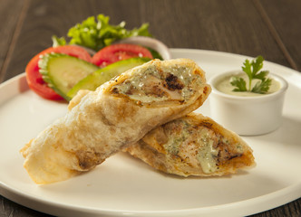 Traditional roll kebab paratha tikka wrap served on a plate with