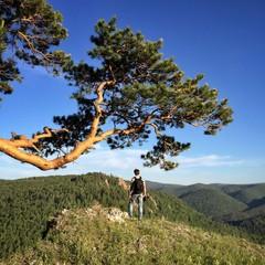 Молодой мужчина на погулке в горах