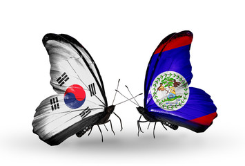 Two butterflies with flags South Korea and Belize