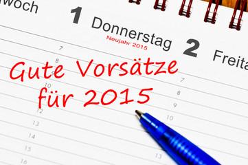 vorsätze 2015
