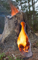 Flames atop