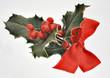 rote Beeren Stechpalme mit Schlaufe