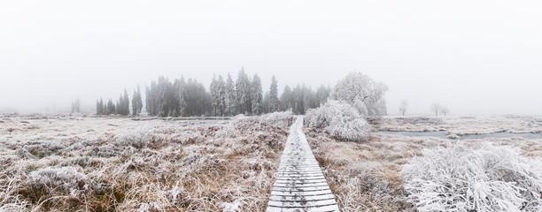 Brackvenn Winterlandschaft Panorama
