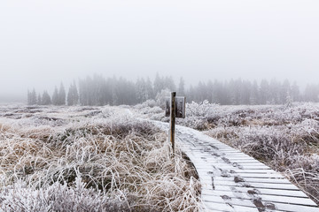 Winterpfad im Hohen Venn