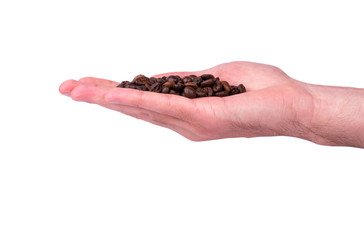 Grains of coffee in hand
