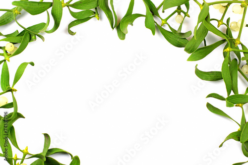 canvas print picture Christmas decoration, mistletoe with berries