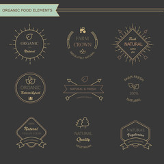 Set of vintage style elements for labels and badges for meat,