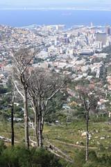 Blick vom Tafelberg auf Kapstadt & Atlantik