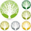 Logo, Pflanze, Baum, Heilpraktiker