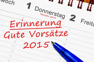 gute vorsätze 2015