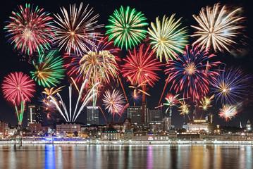 Feuerwerk über Hamburg